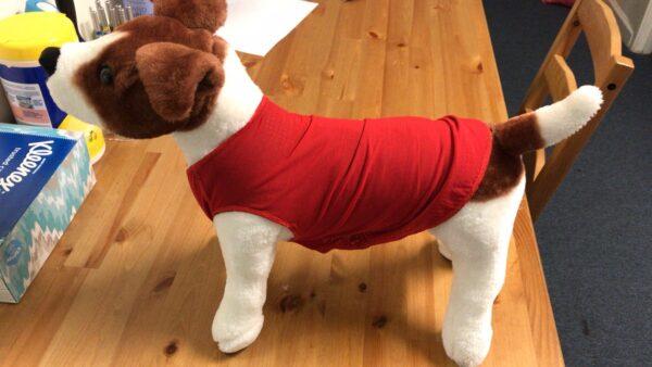 Pet Infrared Vest